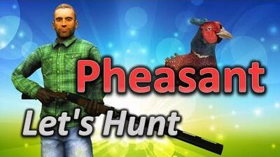 TheHunter Let's Hunt PHEASANT