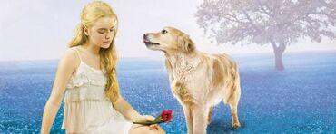 Riley-Bloom-by-Alyson-Noel-1-