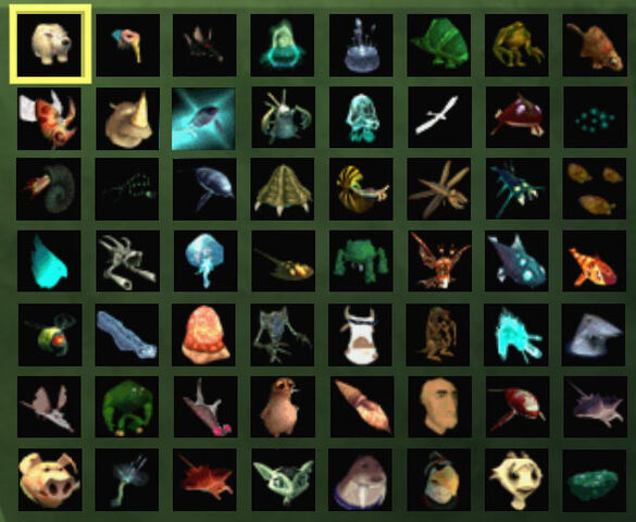 File:Species.jpg