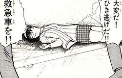 Miyuki Nanase's Hit and Run Victim (Manga)
