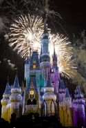 Cinderella-castle-night