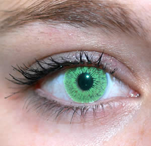 File:Green Eyes.jpg