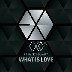 Whatislovecover
