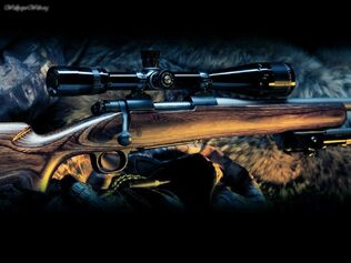 Sniper Rifle 4947 1024 768