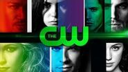 The 2014 CW First Look