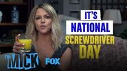 National Screwdriver Day Season 1 THE MICK