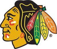 Chicago blackhawks.jpg
