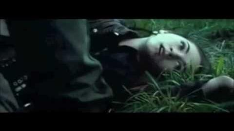 Hunger Games II The Fallen