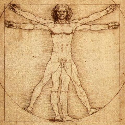 File:Vitruvian Man.png