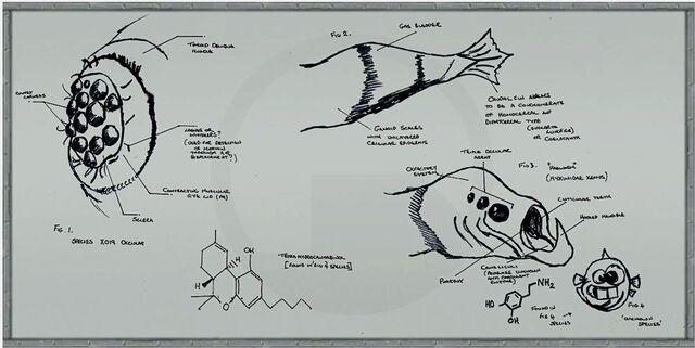 File:C2a4x labboard8.jpg