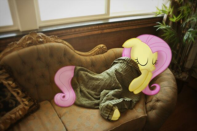 File:Fluttershy Sleeping on The Couch.jpg