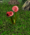 File:Seeds of Heaven Flower.png