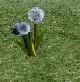 Thumbnail for version as of 01:20, May 28, 2010