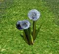 Thumbnail for version as of 01:41, May 28, 2010