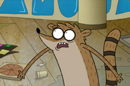 Distressed Rigby