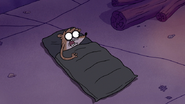 S4E17.023 Rigby Wakes Up to See Gregg