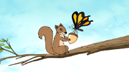 S5E29.003 A Butterfly Giving an Acorn to the Squirrel