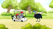 S6E24.125 Mordecai Stopping in Front of the Cassowary