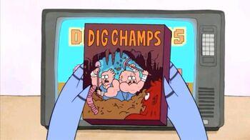 Digchampsbox