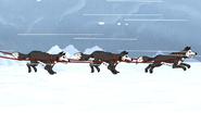 S4E26.148 Sled Dogs