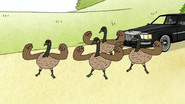 S6E24.204 The Geese are Ready to Fight