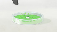 S8E06.036 Green Liquid Reacting with the Mint