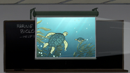 S6E15.001 Sea Turtles on Screen
