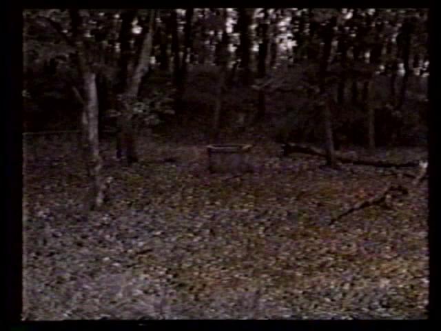 File:Scene10 (1).png