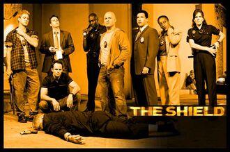 Shield cast