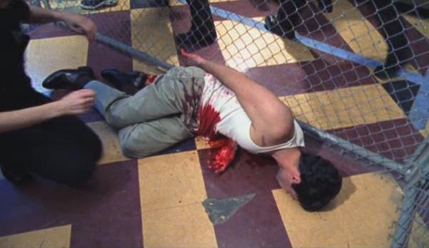 File:2x08 Armadillo dies.jpg