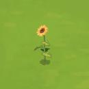 FlowerHeadGarland