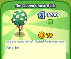 TheQueensRoseBush