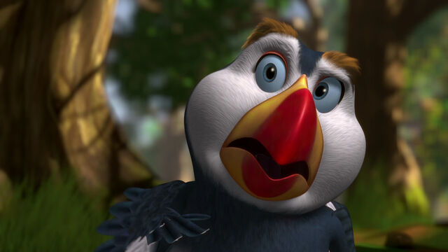 File:Puffin is shocked.jpg
