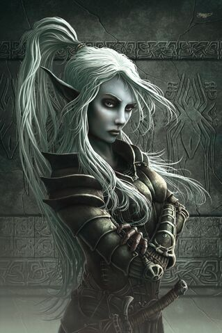 File:Drow Fighter.jpg