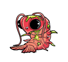 Stinky Shrimpy Artwork