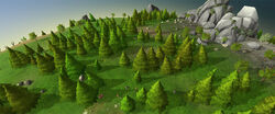 New tree models preview