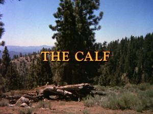 File:Thecalf.jpg