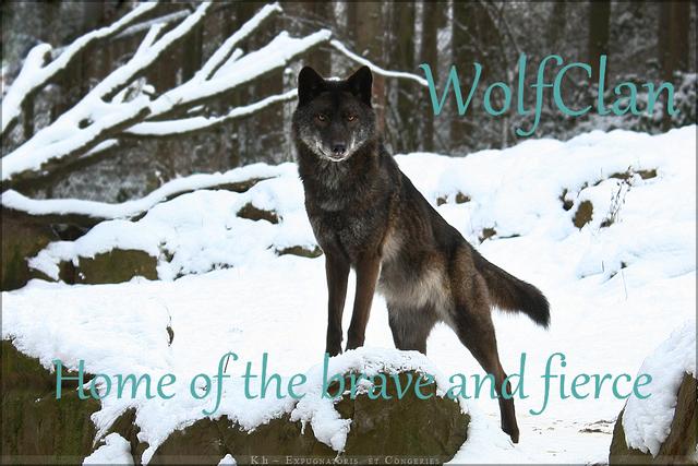 File:WolfClan.png