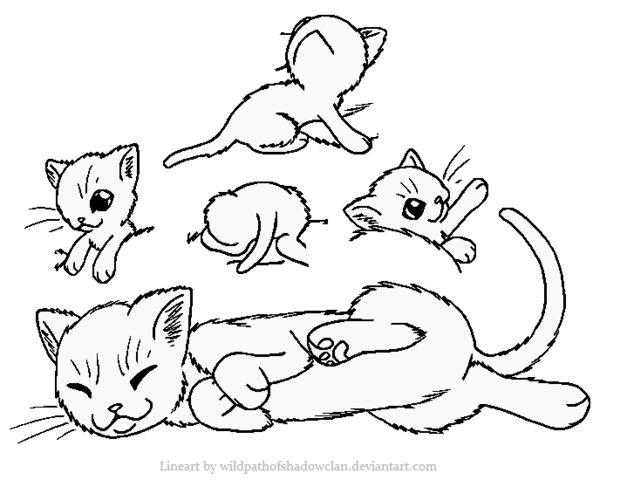 File:Queen Kits Lineart by WildpathOfShadowClan.png