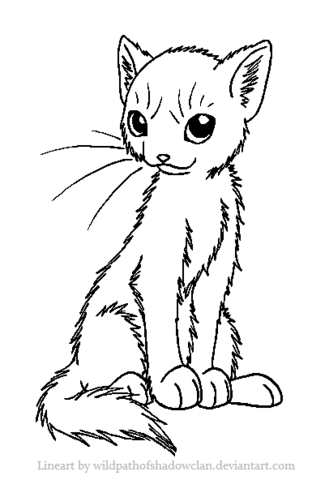 File:Mediumhaired Warrior Lineart by WildpathOfShadowClan.png
