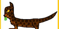 Owlspirit (Up for Adoption)