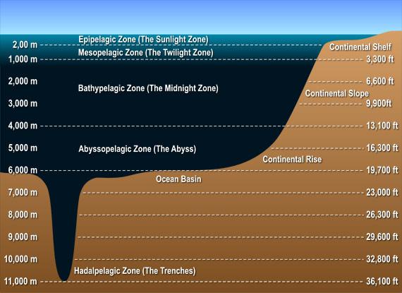 File:Ocean-layers-diagram.jpg