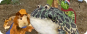 Save the bullfrog save the poodle ywkgb
