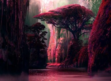 The Nameless Island - dryad grove