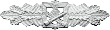 File:Close Combat Clasp (silver).png
