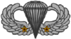 Parachutist Badge (2 jumps)