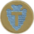 36th Infantry Division alternative