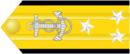 Vice Admiral (US Navy)