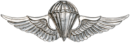 Parachutist Badge (Japan)