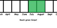 Beech-green Carpet